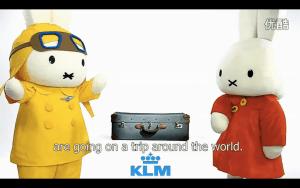 Social Media Marketing in China KLM