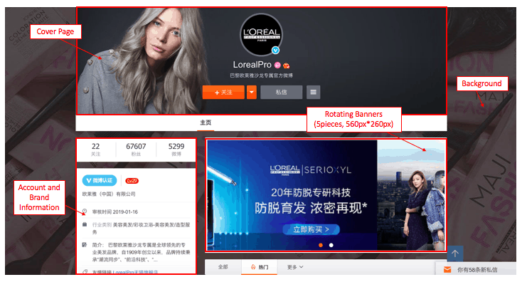 Profile Page of a Weibo corporate account | Dragon Social