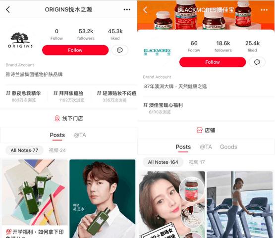 Brand accounts of Origins and Blackmores on XiaoHongShu   Dragon Social