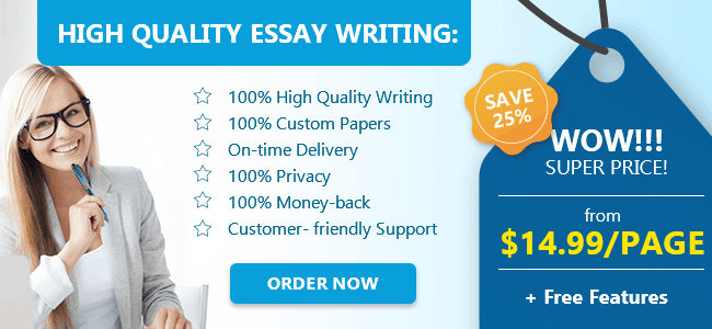 Companies like the one above exist primarily to assist Chinese students with their essay writing.